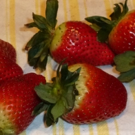 Don is preparing strawberries for dipping into chocolate on Valentine's Day© Gail Harker