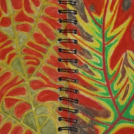 © Sylvia Polk - small sketchbook studies for design theme of Plants and Flowers