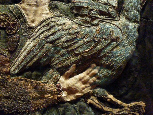 closeup of bird held by Patience