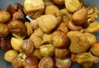 © Don Harker - peeled chestnuts