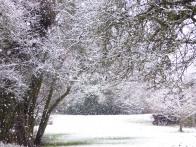 © Gail Harker - winter at Barn House