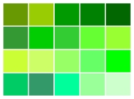 Many colors of green ©Gail Harker